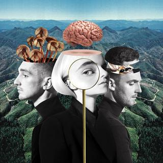 "Plattencover: Clean Bandit ""What Is Love"" (Foto: Pressefoto)"