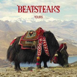 "Cover ""Beatsteaks - Yours"" (Foto: Warner Music)"