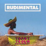 Rudimental - Toast To Our Differences (Foto: Warner Music)
