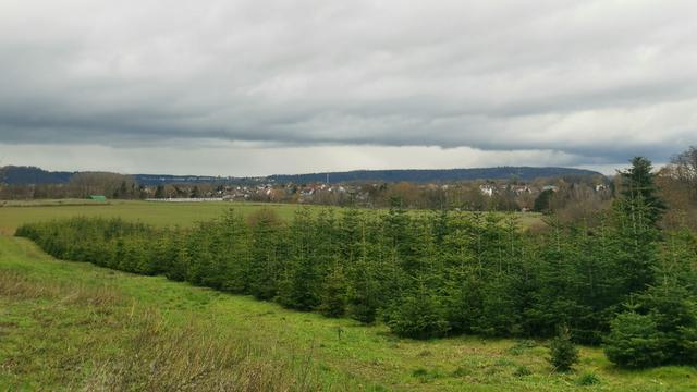 Wetter Altforweiler